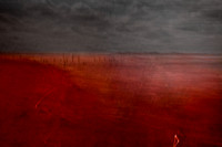 sea of blood 4