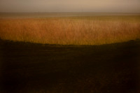 oare marshes #13